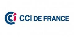 i-logo-cci-fce-sitesweb
